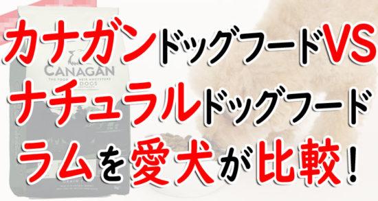 カナガンvsアランズナチュラルドッグフード ラム