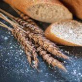 カナガン小麦