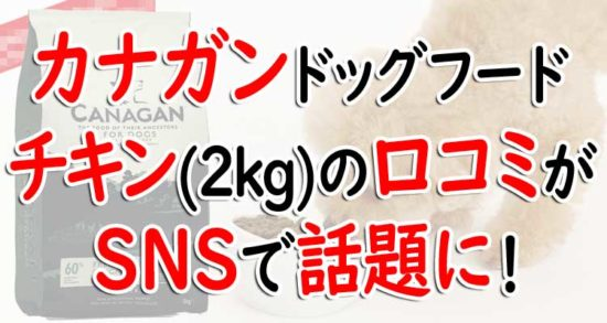 カナガンドッグフード チキン(2kg)の口コミ